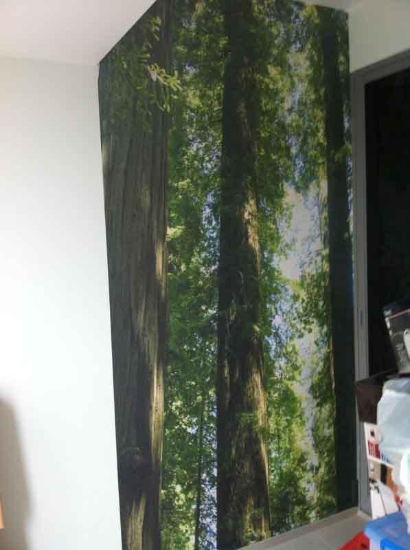 wallpaper 7